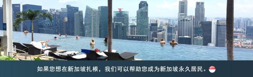 请查看有关新加坡永久居民的申请标准