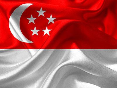 Path to Singapore PR Via the Singapore Global Investment Programme