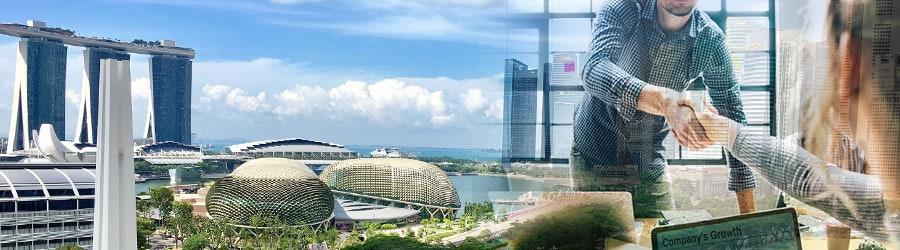 新加坡的持牌职业介绍所