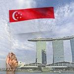 新加坡不允许双重公民身份
