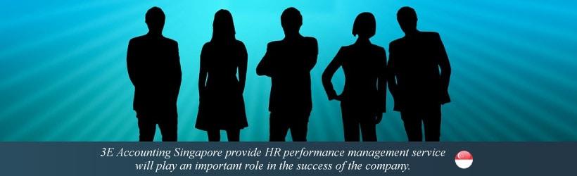 HR Performance Management Services