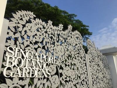Enjoy The Public Holiday in Singapore Botanic Gardens