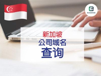 新加坡公司域名查询