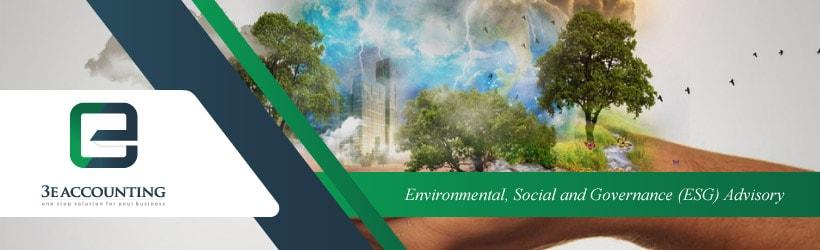 Environmental, Social and Governance (ESG) Advisory