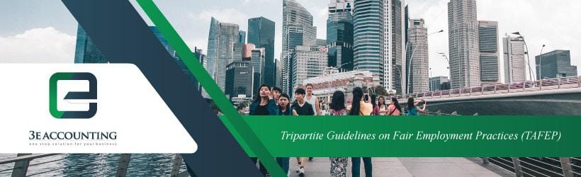 Tripartite Guidelines on Fair Employment Practices (TAFEP)